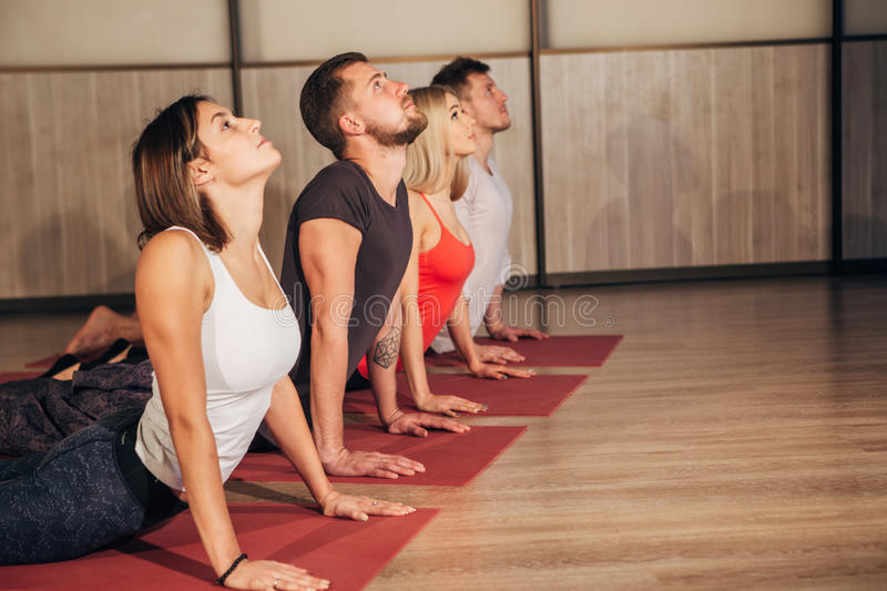 Fitness group doing cobra pose in row at the yoga class. Four young people doing yoga exercises stock photos