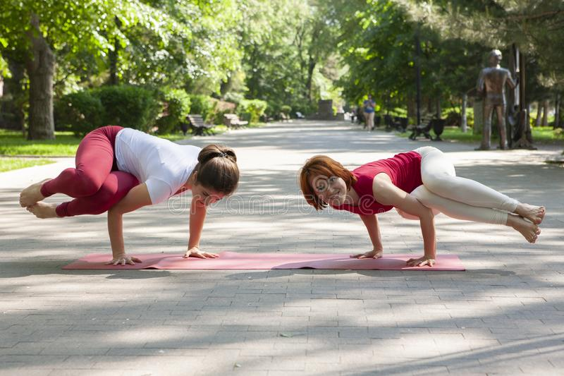 Fitness group doing yoga in park Pose tree. Workout. Portrait stock photography