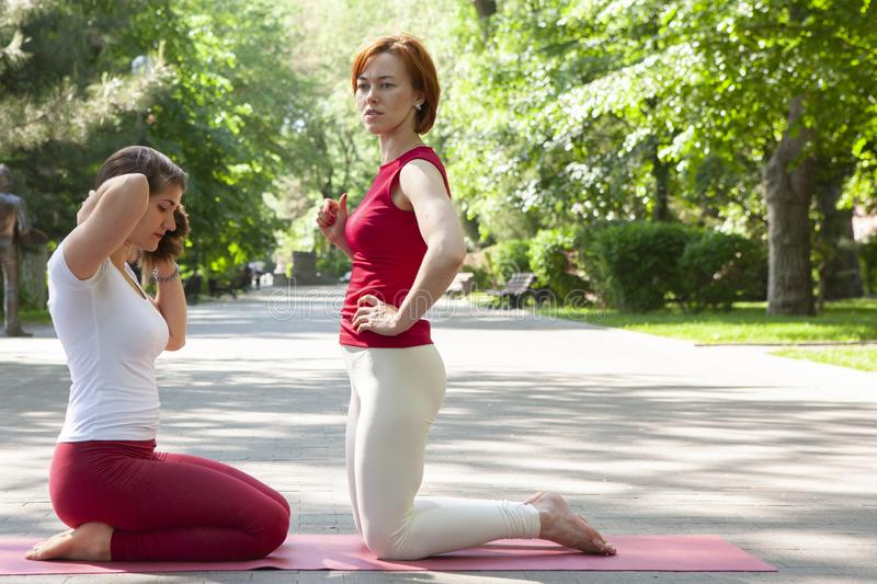 Fitness group doing yoga in park Pose tree. Workout. Portrait stock images