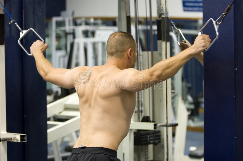 fitness gym training stock images