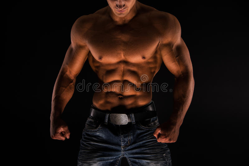 Fitness male torso royalty free stock images