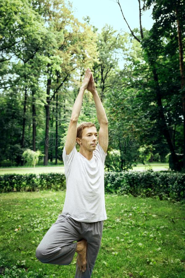 Fitness, man training yoga in tree pose. In park royalty free stock photos