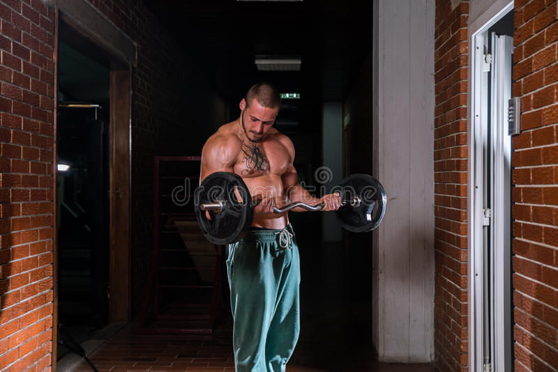 Fitness model. Attractive fitness model posing in a gym stock photography
