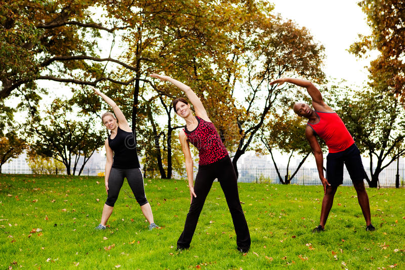 Fitness park. A group of people stretching in a park royalty free stock images