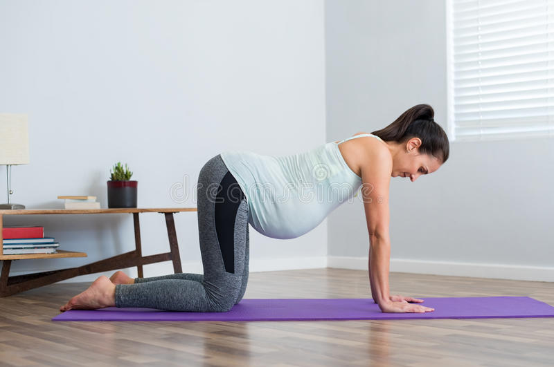 Fitness pregnant woman exercising stock images