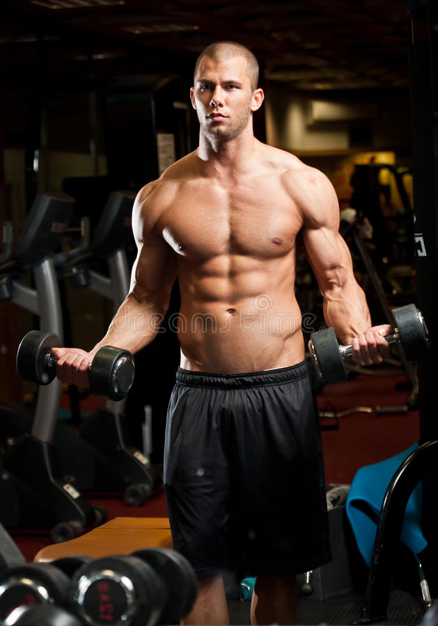 Fitness strength. Portrait of an attractive athletic young man in a gym royalty free stock image