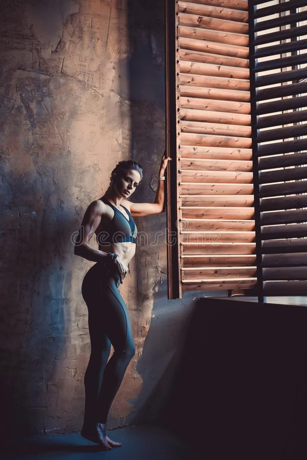 Fitness strength training workout concept - muscular bodybuilder sport girl doing exercises in gym. Fitness strength training workout concept background stock photo