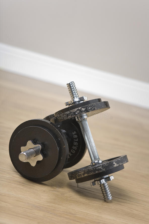 Download Fitness weights stock photo. Image of weightlifting, steroids - 13551996