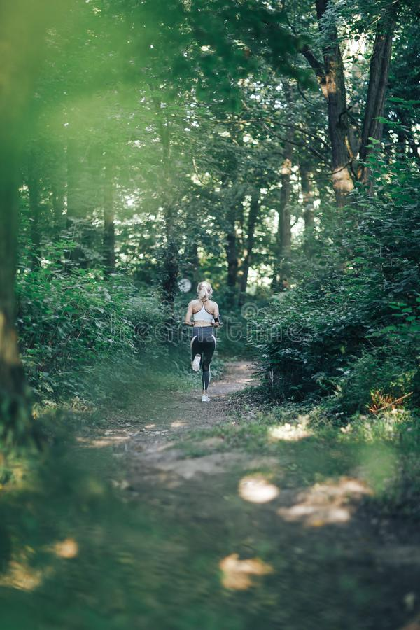 Fitness woman running in the morning park stock image