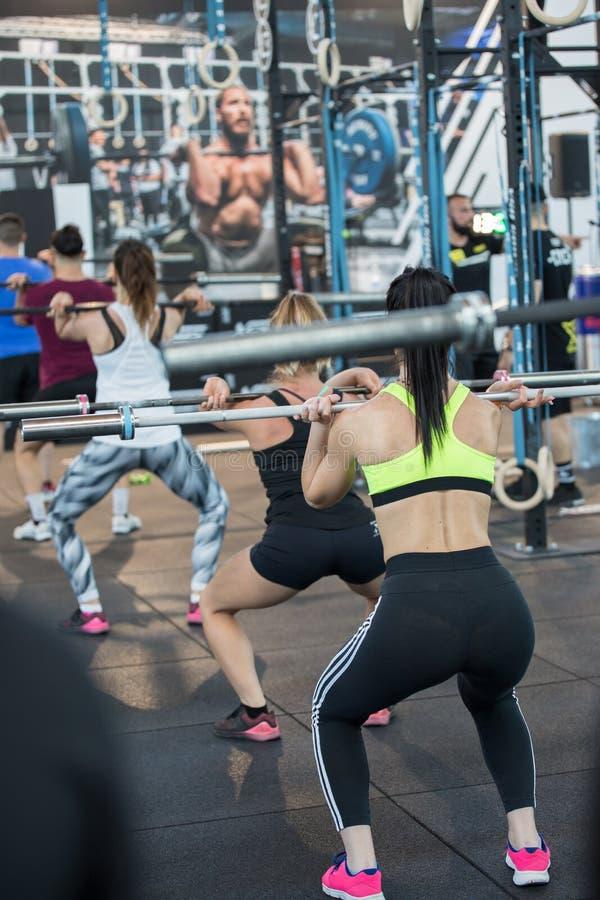 Fitness Workout à Gym : Les filles qui font des exercices en classe avec les Barbells photos libres de droits