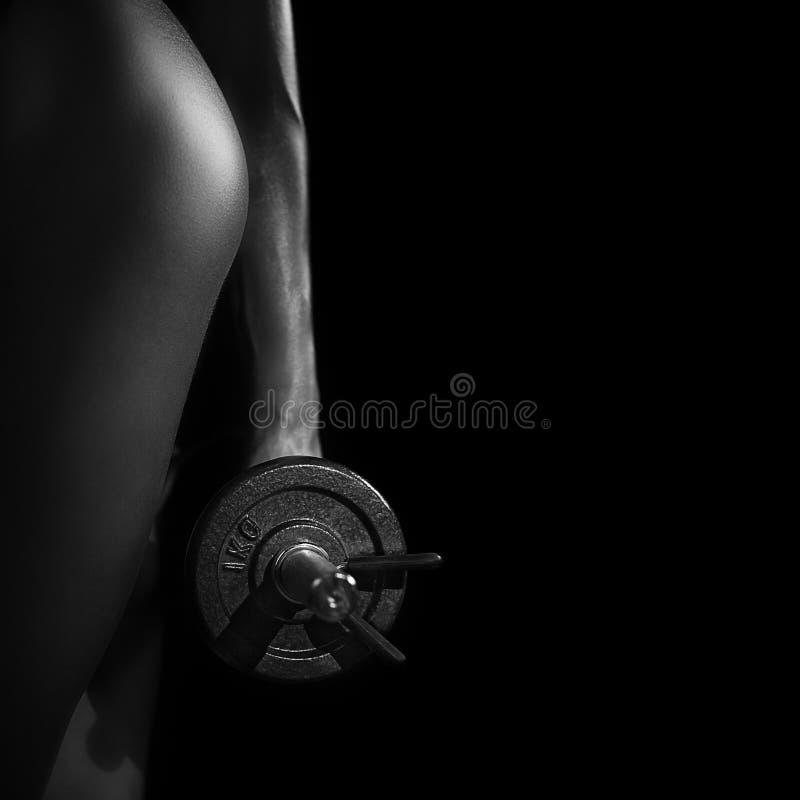 Download Fitnesschoonheid stock afbeelding. Afbeelding bestaande uit wijfje - 39112517