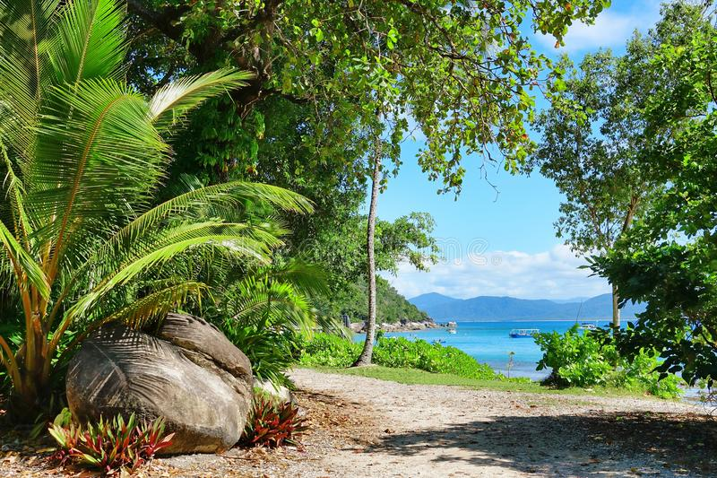 Fitzroy Island, Queensland, Australia, Great Barrier Region royalty free stock photo