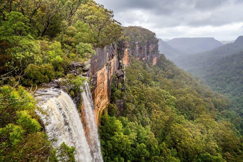 Fitzroy vatten faller åska över vaggar framsidan in i den forested kanjonen i kängurudalen, royaltyfria foton