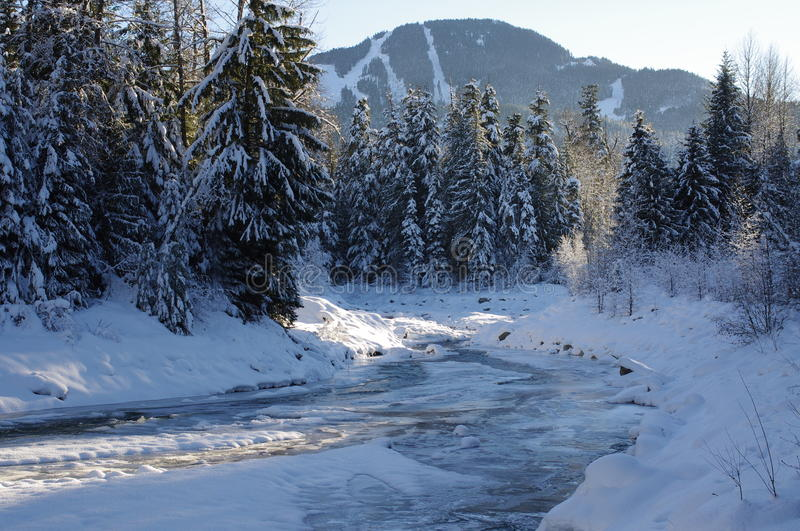 Fitzsimmons Creek in Whistler Village royalty free stock image