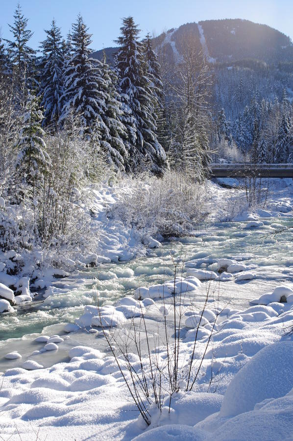 Fitzsimmons Creek in Whistler Village. With a view of Whistler Mountain in the background stock image
