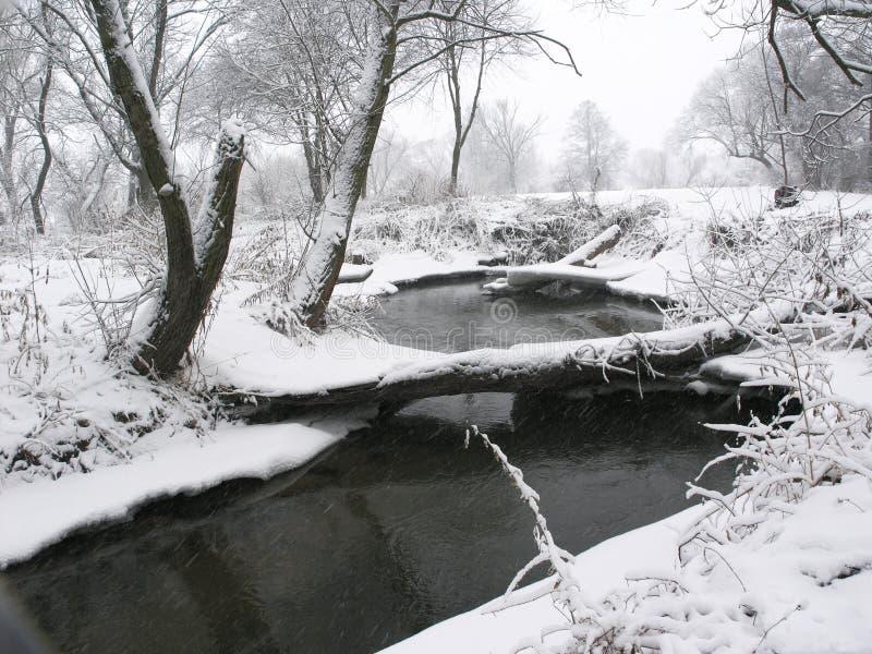 Download Fiume fotografia stock. Immagine di vicolo, rurale, dicembre - 3894432