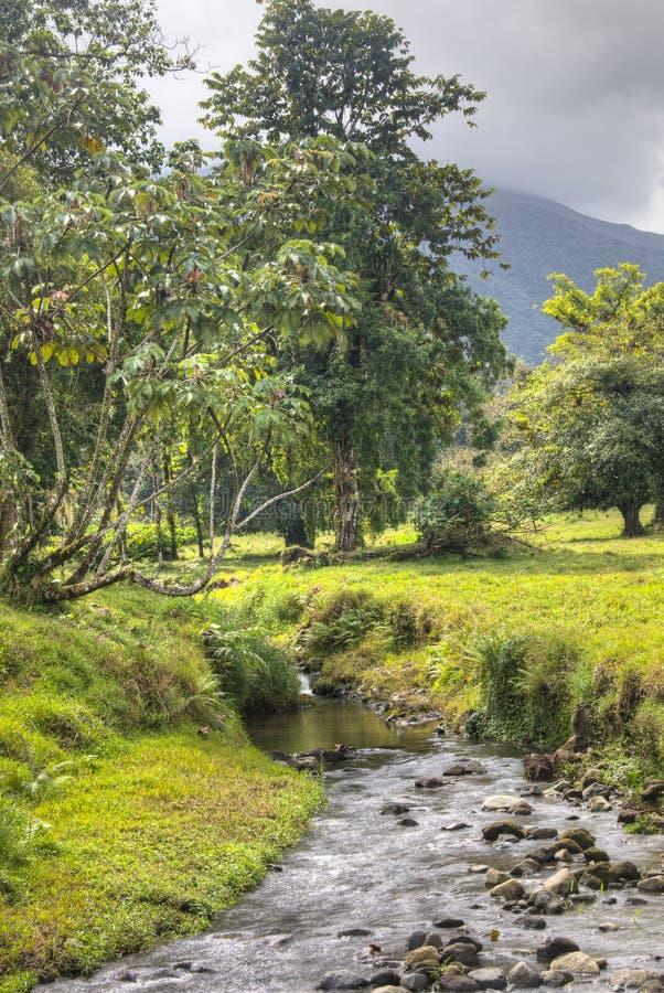 Fiume alla cascata di Fortuna della La nel parco nazionale di Arenal, Costa Rica immagini stock