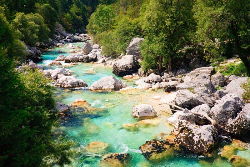 Fiume alpino colorato smeraldo Soca immagini stock libere da diritti