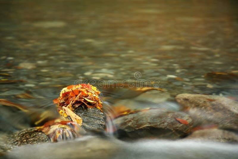 Fiume in autunno fotografie stock libere da diritti