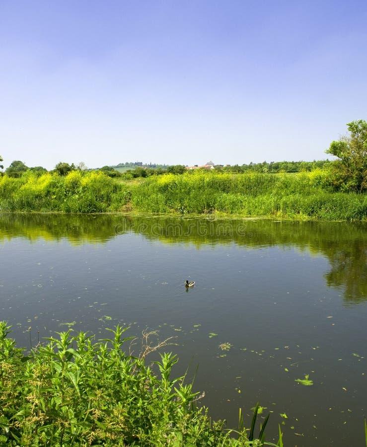 Fiume Avon Stratford su avon immagini stock