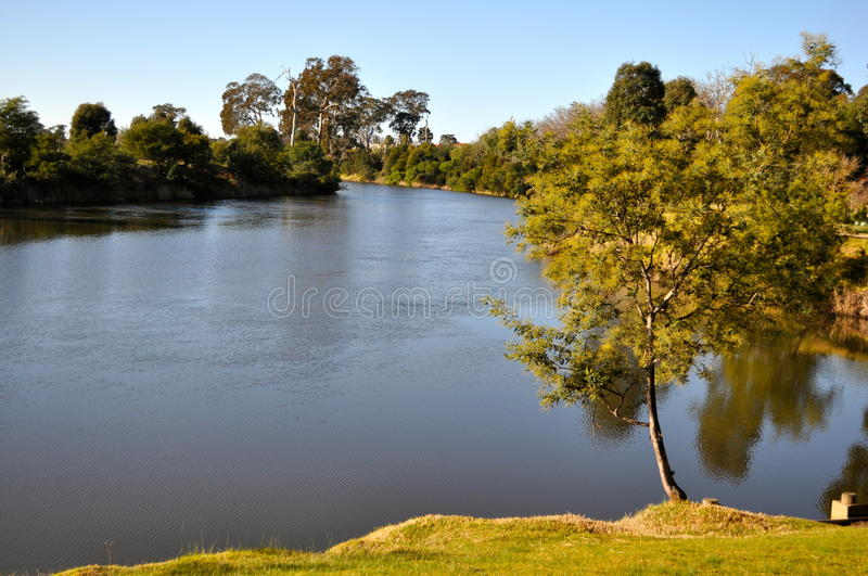 Fiume Bairnsdale di Mitchell fotografie stock
