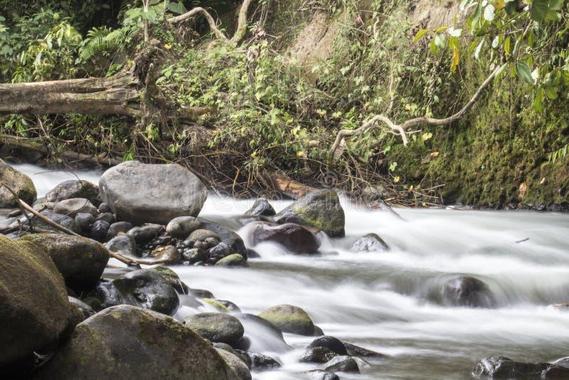 Fiume con le rocce fotografia stock libera da diritti