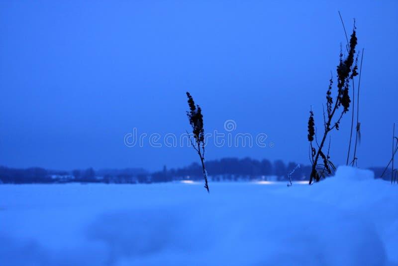 Fiume congelato bianco ed orizzonte fotografia stock