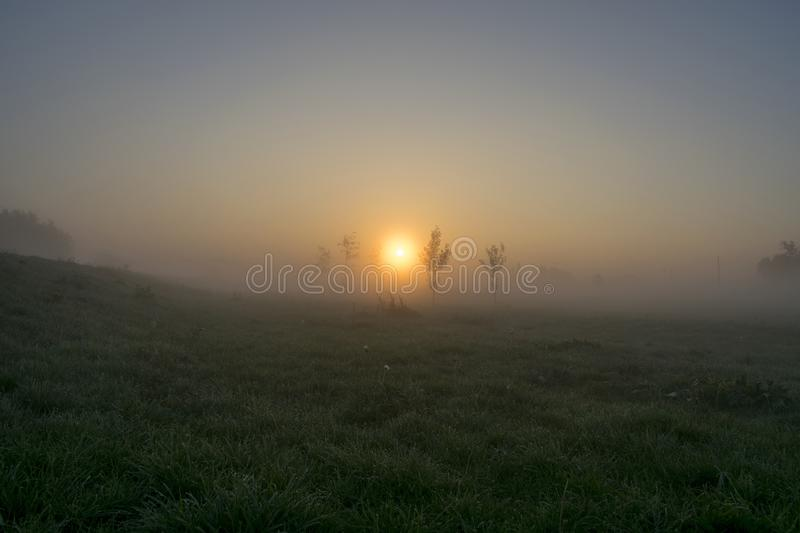 Fiume Dearne di Misty Morning Sunrise Beside The immagine stock libera da diritti