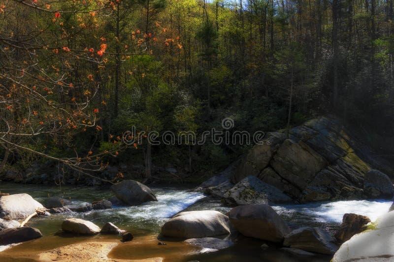 Fiume degli alci in Avery County North Carolina immagine stock libera da diritti