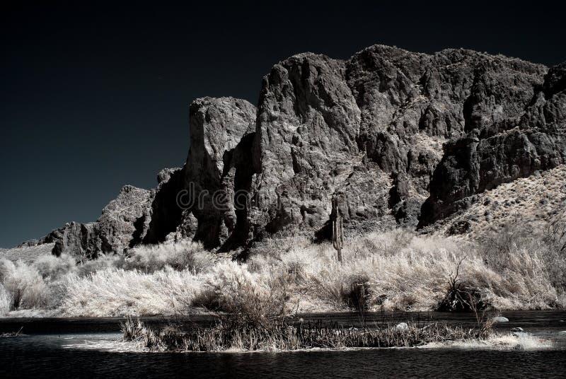 Fiume del deserto di luce della luna fotografia stock libera da diritti
