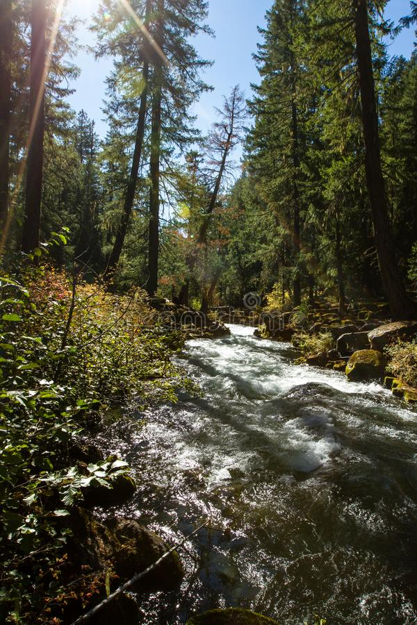 Fiume del rossetto, Oregon immagine stock libera da diritti