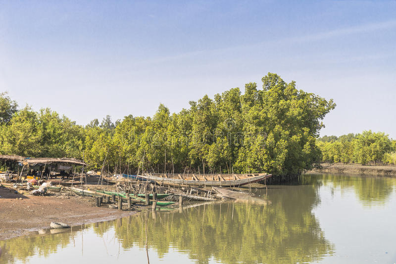 Fiume della Gambia fotografia stock