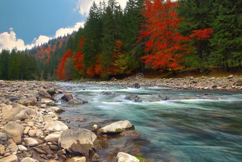 Download Fiume Della Montagna In Autunno Fotografia Stock - Immagine di erba, autunno: 56888710