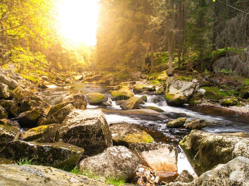 Fiume della montagna con le pietre enormi nel fiume di for Pietre di fiume
