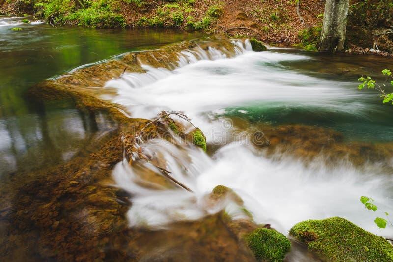 Fiume della montagna con le rocce muscose nella primavera immagine stock libera da diritti