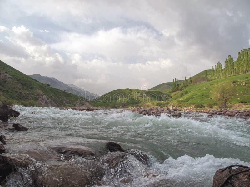 Fiume della montagna del paesaggio fotografia stock