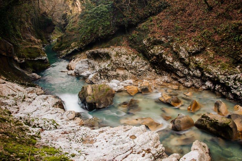 Fiume della montagna di Georgous fra le rocce e gli alberi fotografia stock libera da diritti
