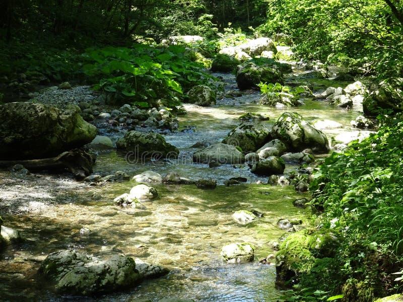 Fiume della valle di Soca, Slovenia immagine stock