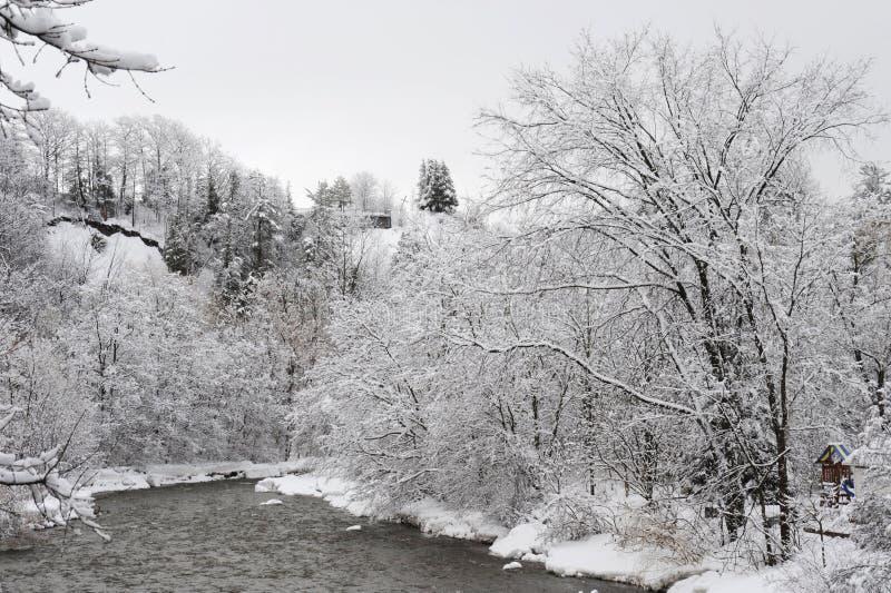 Fiume di credito nella mattina fredda di inverno fotografia stock libera da diritti