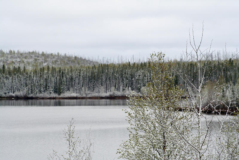 Fiume di Geikie in Saskatchewan fotografie stock