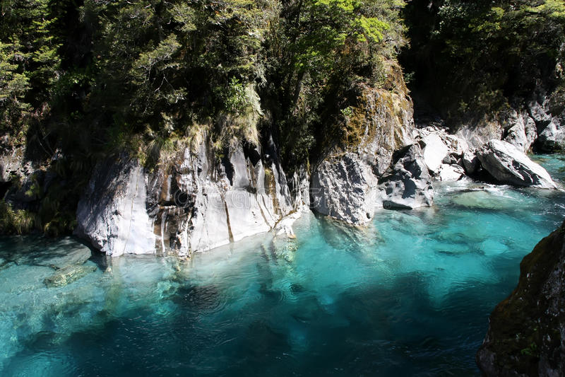Fiume di Haast, stagno blu, isola del sud della Nuova Zelanda fotografia stock