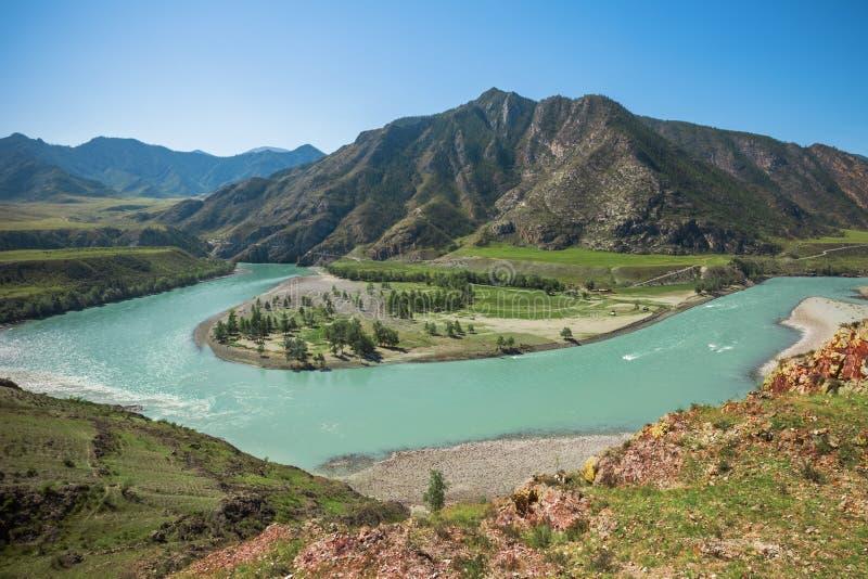 Fiume di Katun di torsione nelle montagne di Altai immagini stock libere da diritti