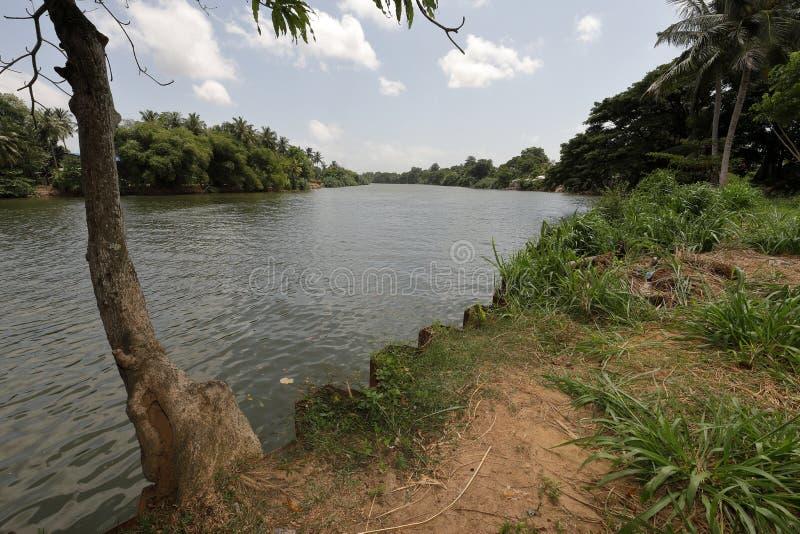 Fiume di Kelani a Colombo immagini stock