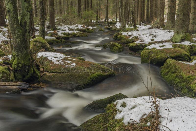 Fiume di Mensi Vltavice nel giorno di inverno della neve fotografie stock libere da diritti