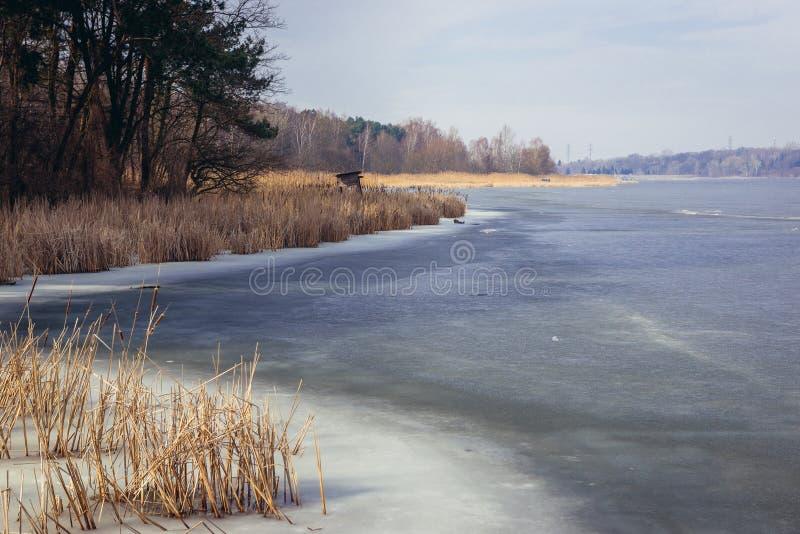 Fiume di Narew in Polonia immagini stock libere da diritti