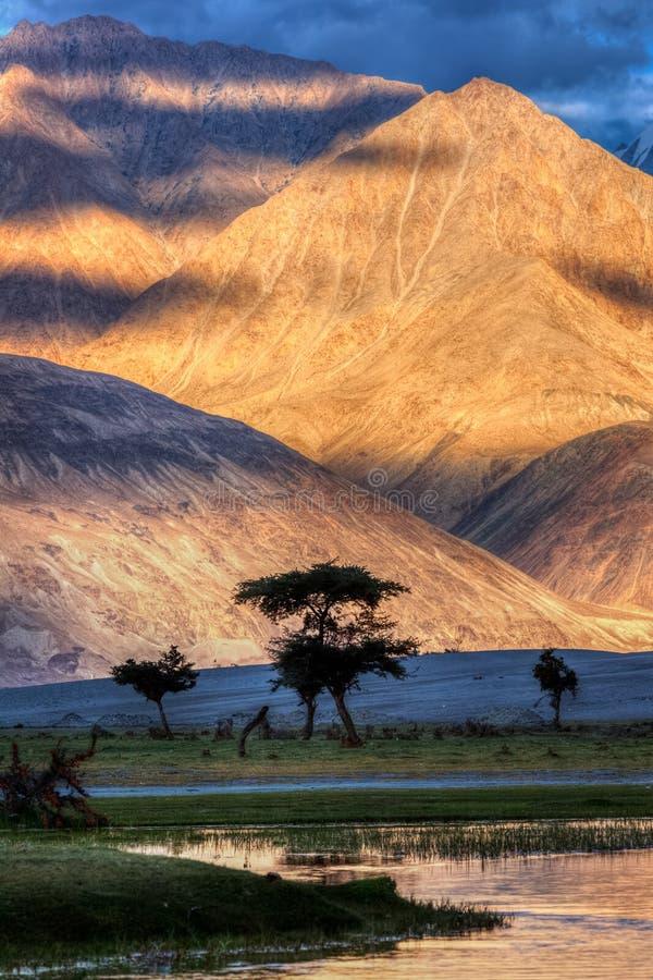 Fiume di Nubra in valle di Nubra in Himalaya immagine stock