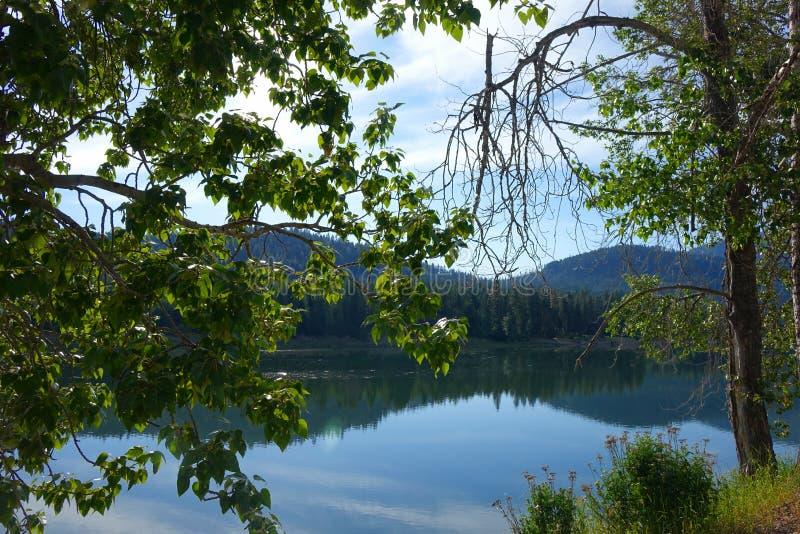 Fiume di Pend Oreille, Washington immagini stock