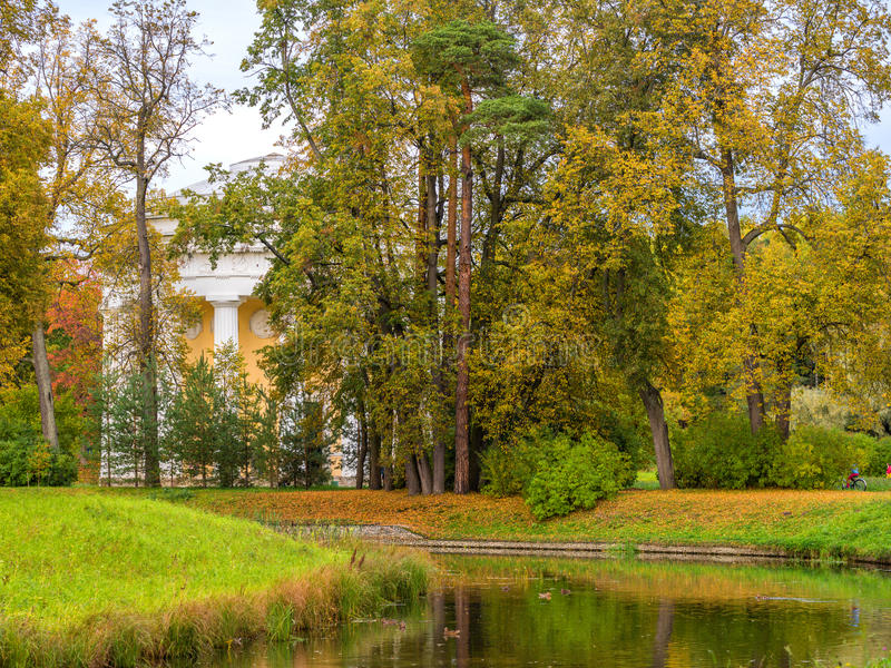 Fiume di Slavyanka nel parco di Pavlovsk in autunno fotografia stock
