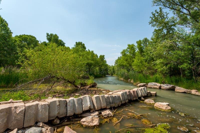 Fiume di Verde, Arizona fotografia stock