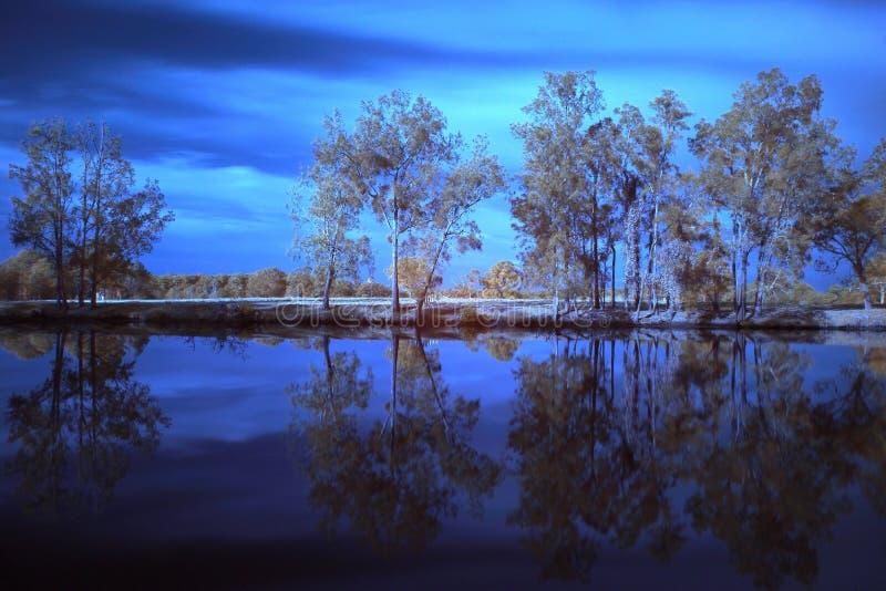 Fiume di Wallamba nel fondo infrarosso immagine stock